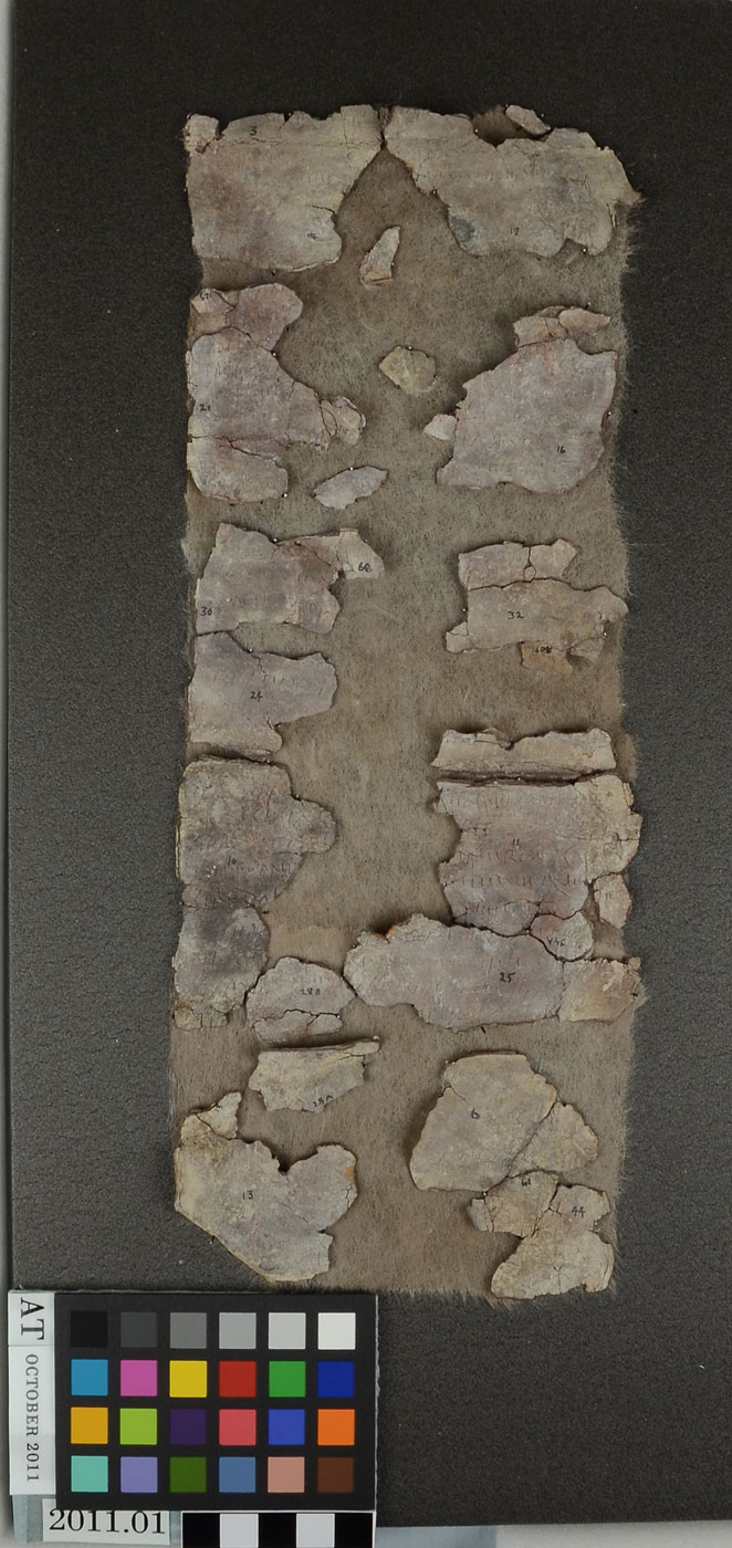 A roman lead curse tablet johns hopkins archaeological museum accession publicscrutiny Choice Image