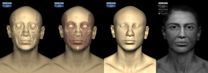 Reconstruction stages of the Goucher Mummy